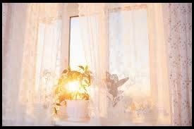 Older people need a sunny window